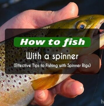how to fish with a spinner