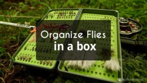 How to Put Flies and Organize them in a Box