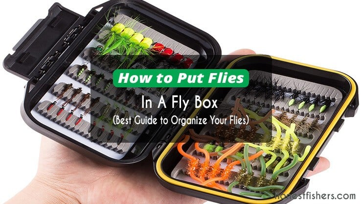 How to Organize Your Fly Box