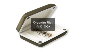 Organize Flies in a box