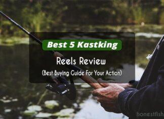 Kastking reels review