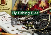 Fly Fishing Flies Identification