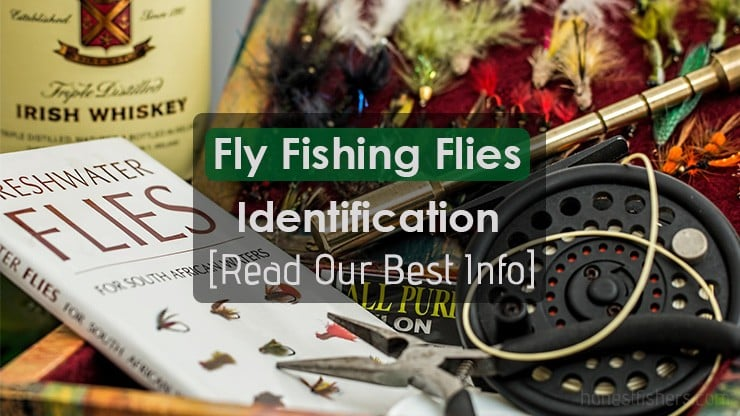 Fly Fishing Flies Identification Info
